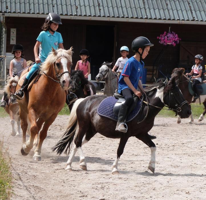 centre equestre nouan le fuzelier